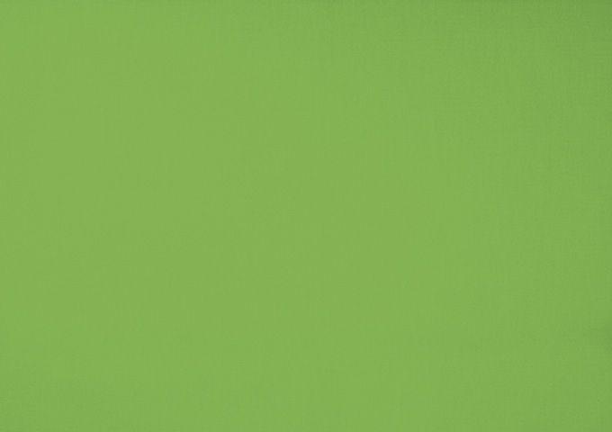 Toile au metre amande vert dickson orchestra 7244